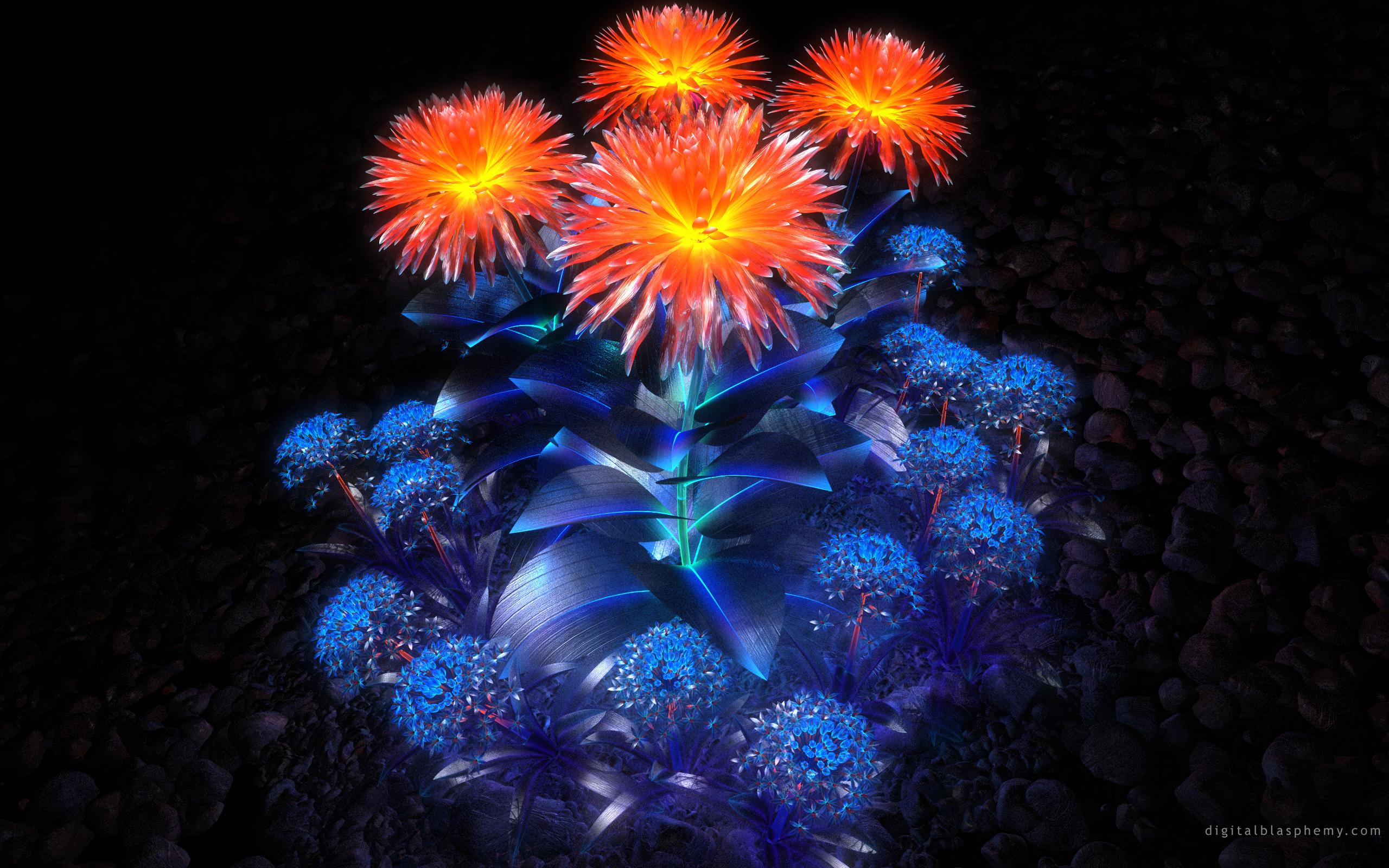 Волшебные цветы 2560x1600 1905KB Цветы